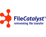 File Catalyst
